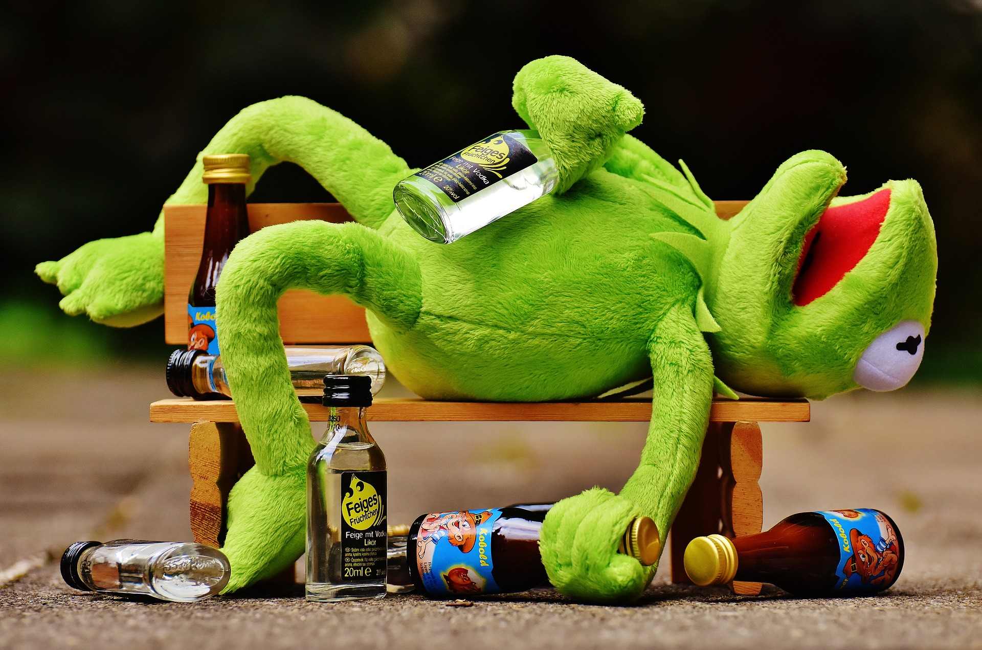Frog wasted - save money on alcohol